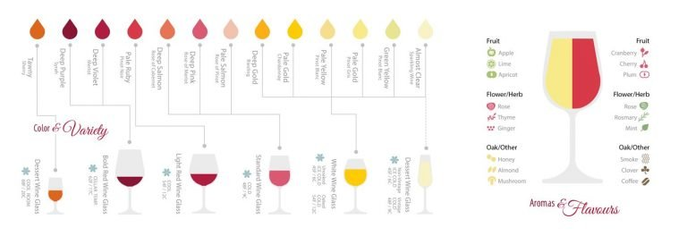 Wine Guide Design